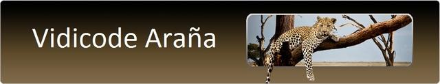 Rejestratory rozmów telefonicznych Vidicode - Arana